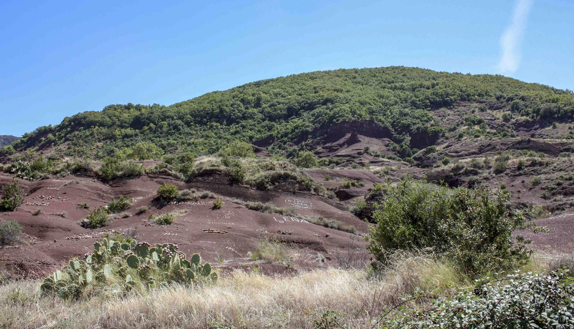 Des milieux ouverts typiquement méditerranéens Grand Site Salagou