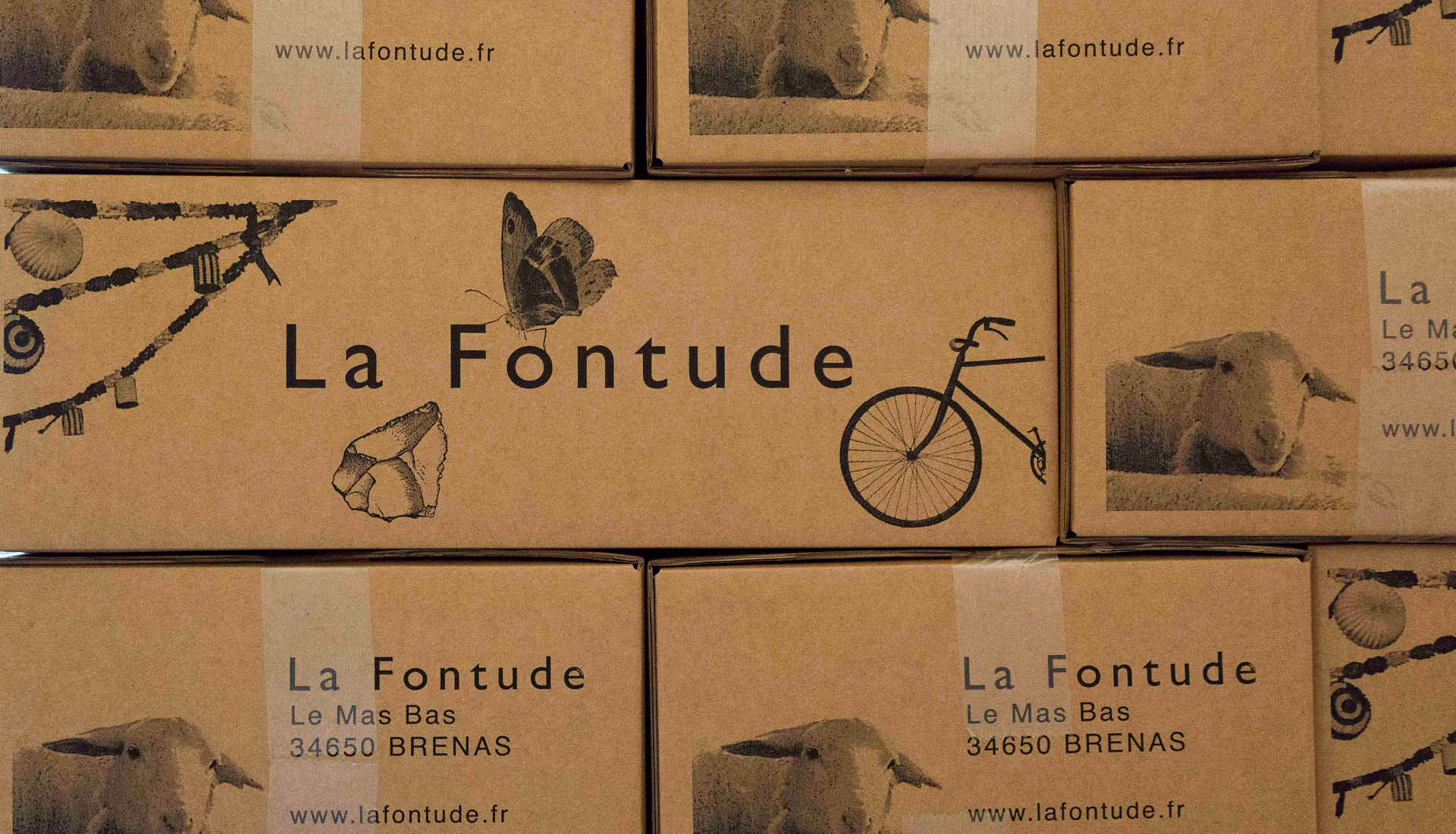 Cultures viticoles Grand Site Salagou © L.Micola 13