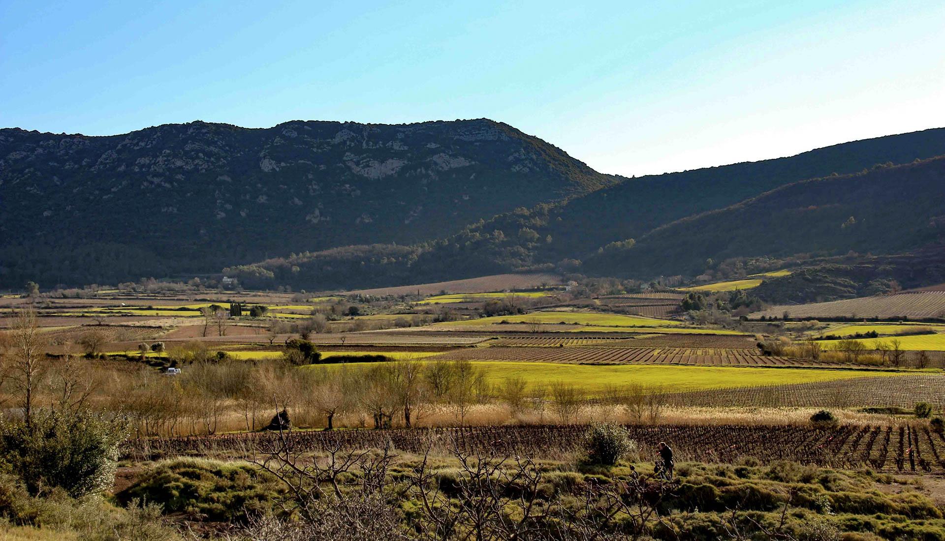 Plaine agricole Vallée du Salagou © V.Dubud