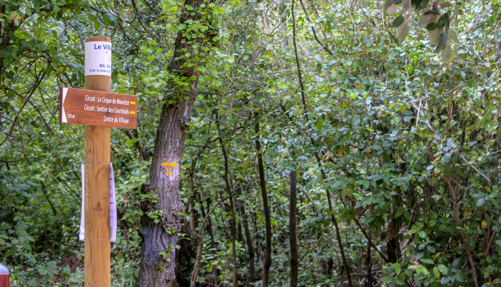 Mourèze et sa forêt © J.Pineau SMGS